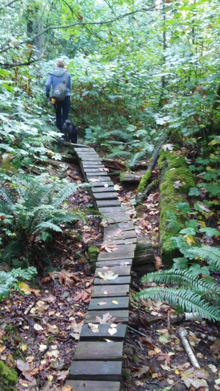 Devon Falls | park | 3279 Harvest Dr, Abbotsford, BC V3G 2Y6, Canada