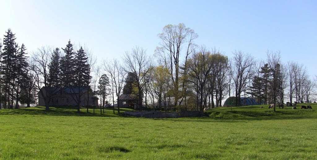 Bridged Creek Farm | point of interest | 222 Brant School Rd, Brantford, ON N3T 5L4, Canada | 5192093944 OR +1 519-209-3944