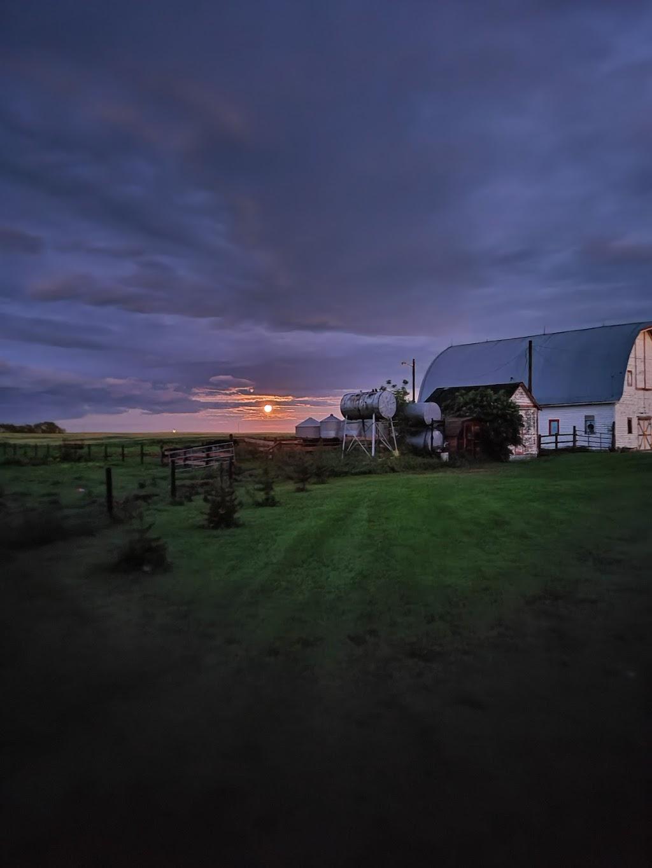 609 Farms | store | 20574 , Hwy 609, Edberg, AB T0B 1J0, Canada | 7808772158 OR +1 780-877-2158