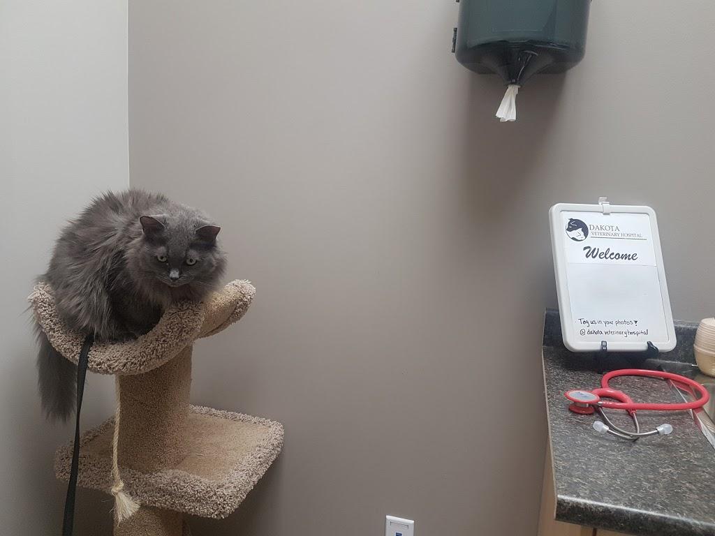 Dakota Veterinary Hospital | veterinary care | 1026 St Marys Rd G, Winnipeg, MB R2M 3S6, Canada | 2042558811 OR +1 204-255-8811