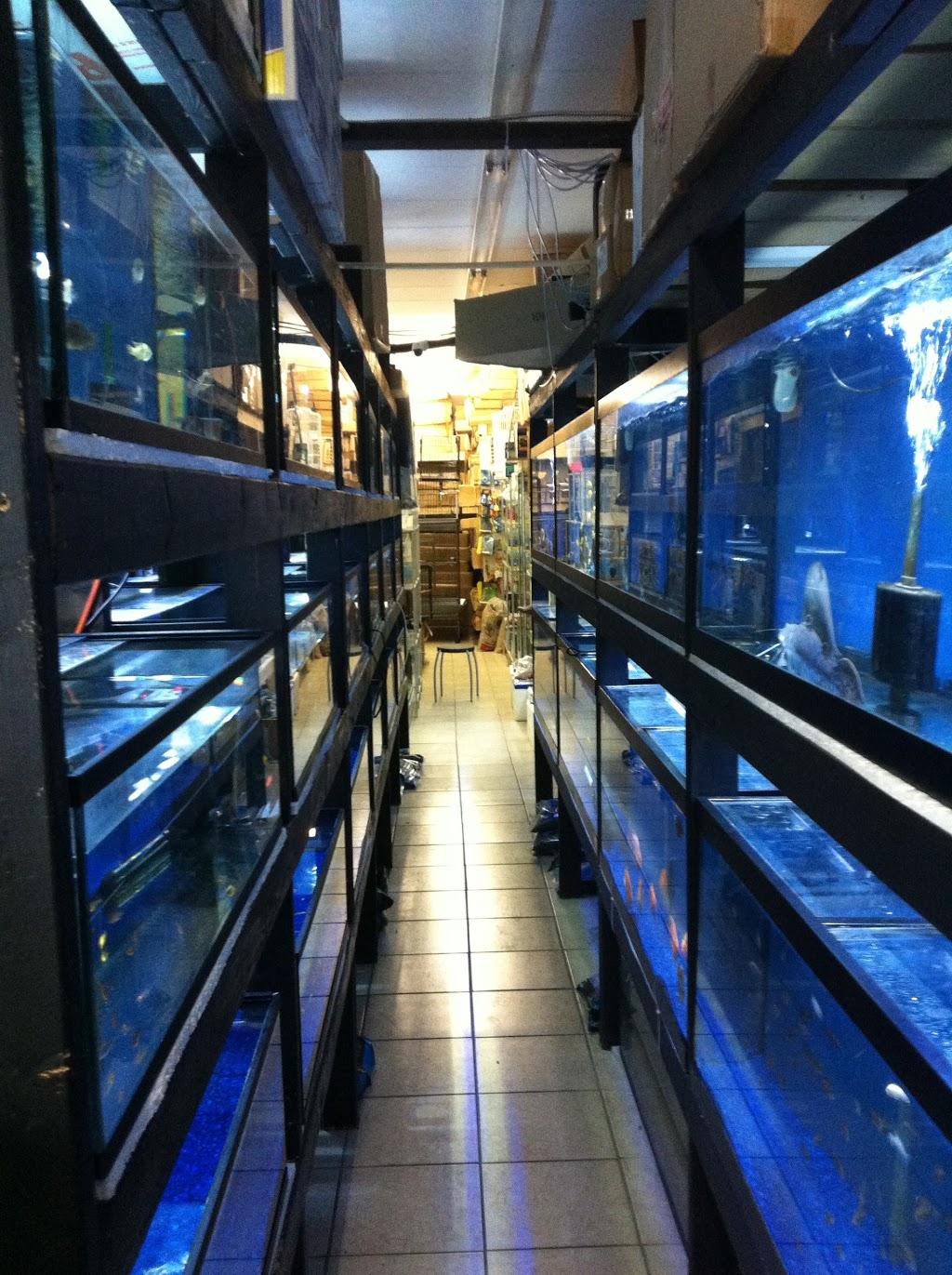 T T Aquarium Pets 1160 Albion Rd Etobicoke On M9v 1a8 Canada