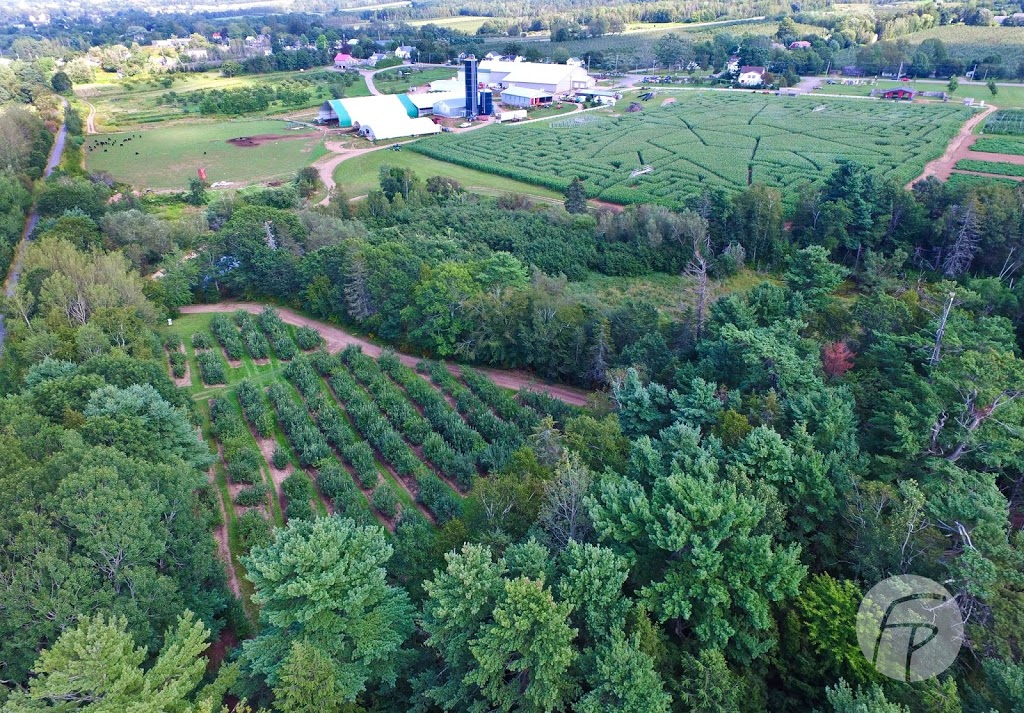 Corn Maze and U-Pick at Noggins Farm   point of interest   9969 Evangeline Trail, Wolfville, NS B4P 2R2, Canada   9025425515207 OR +1 902-542-5515 ext. 207