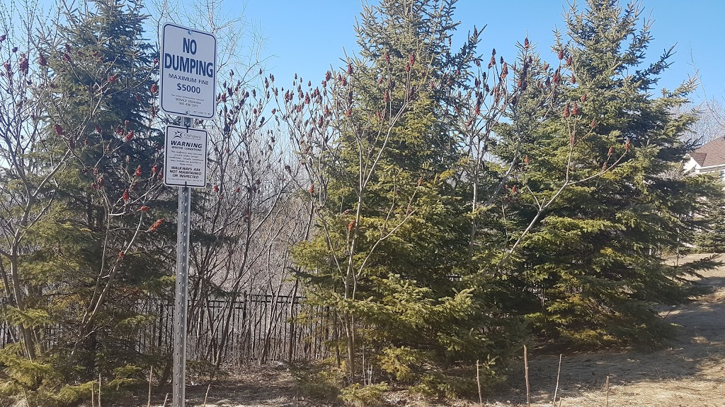 Stormwater Quality Pond & Forest Area   gym   Off 0A5, 965 Langford St, Oshawa, ON L1K 0A5, Canada