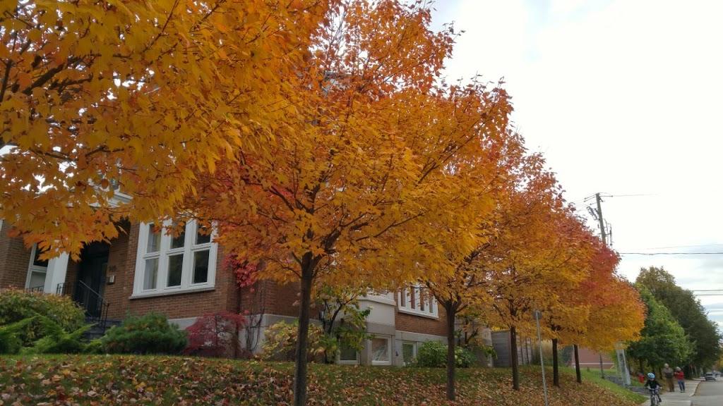 Parc Marquette | park | Avenue de Bienville, Québec, QC G1S 3C7, Canada