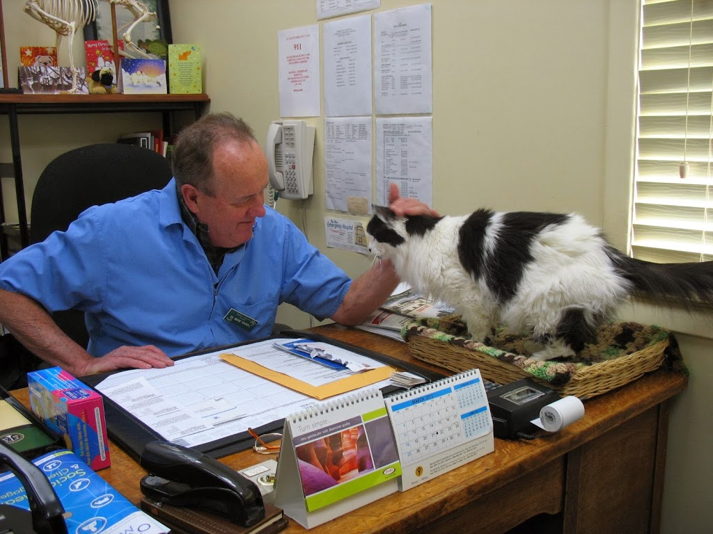 Bagnell Veterinary Hospital   veterinary care   1037 Eglinton Ave W, Mississauga, ON L5V 2W3, Canada   9058263843 OR +1 905-826-3843