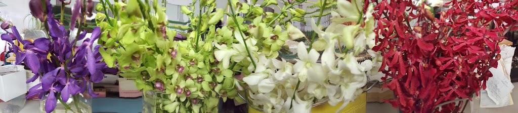 Daisy Chain Design Studio | florist | 1005 Carberry Gardens, Victoria, BC V8S 3R8, Canada | 2503822512 OR +1 250-382-2512