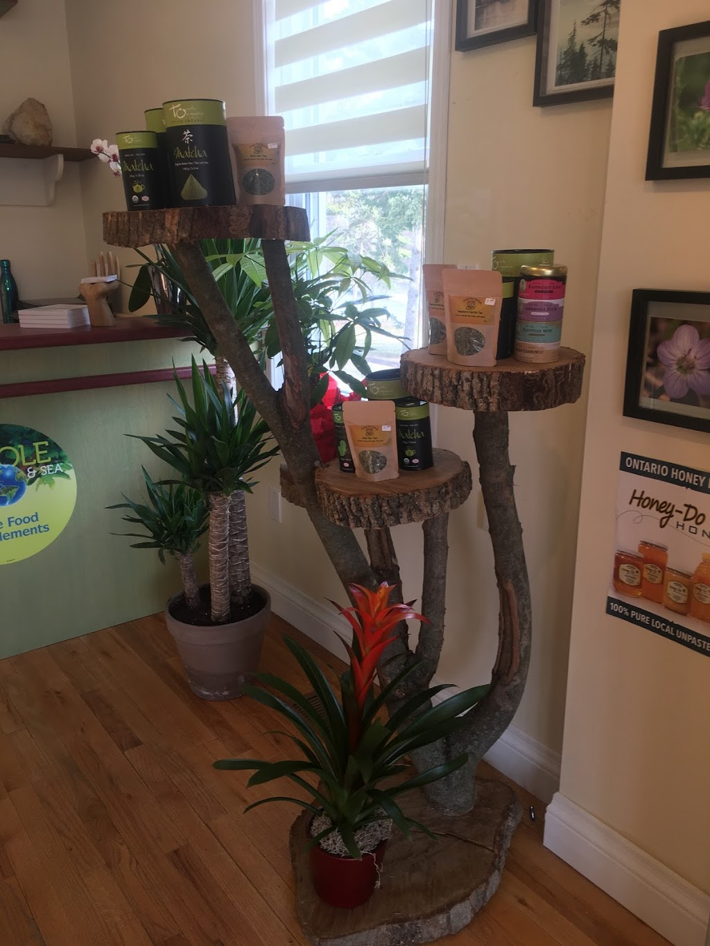 Wellness Cabin Health Co.   store   47 Ontario St S, Grand Bend, ON N0M 1T0, Canada   5198548091 OR +1 519-854-8091