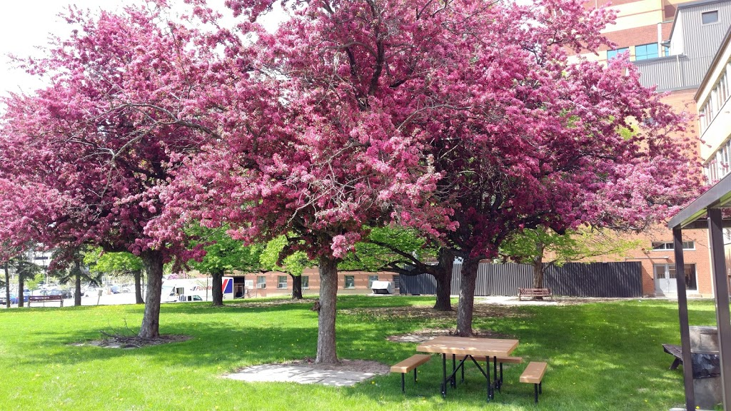 Nelson Park | park | 145 Sir William Hearst Ave, Toronto, ON M3M 0B6, Canada