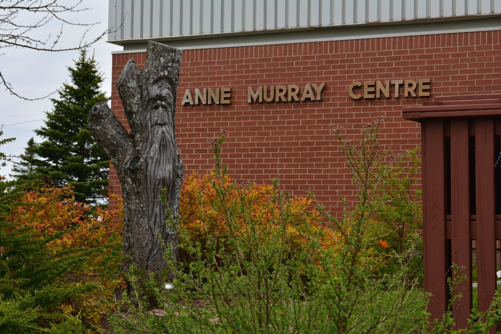 Anne Murray Centre | museum | 36 Main St, Springhill, NS B0M 1X0, Canada | 9025978614 OR +1 902-597-8614