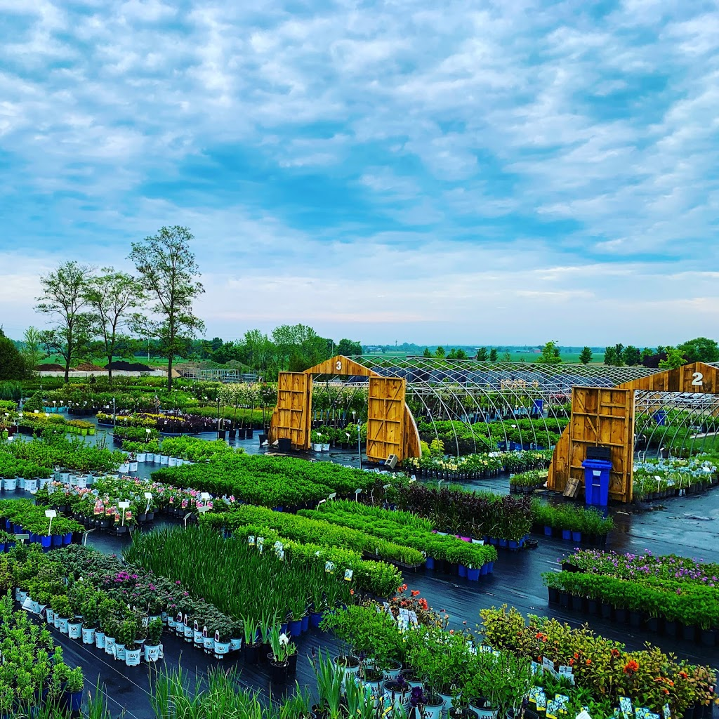 Clearview Nursery | point of interest | 8257 County Rd 91, Stayner, ON L0M 1S0, Canada | 7054280063 OR +1 705-428-0063