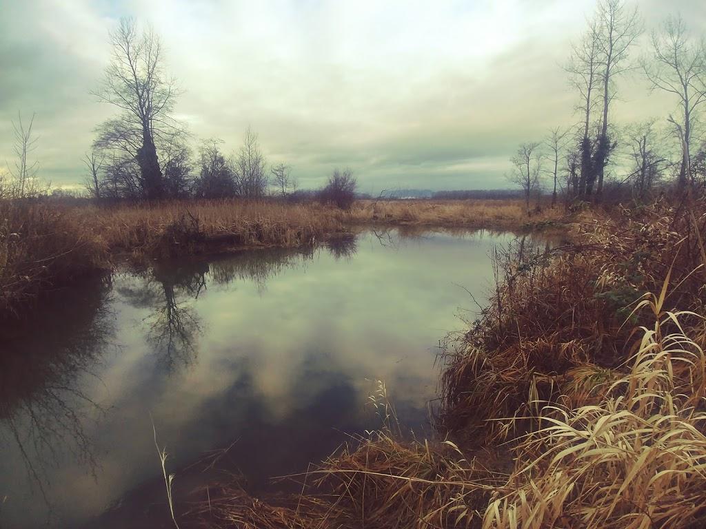 Harbour Park | park | 4905 Mcneelys Way, Delta, BC V4K 5E2, Canada | 6049464141 OR +1 604-946-4141