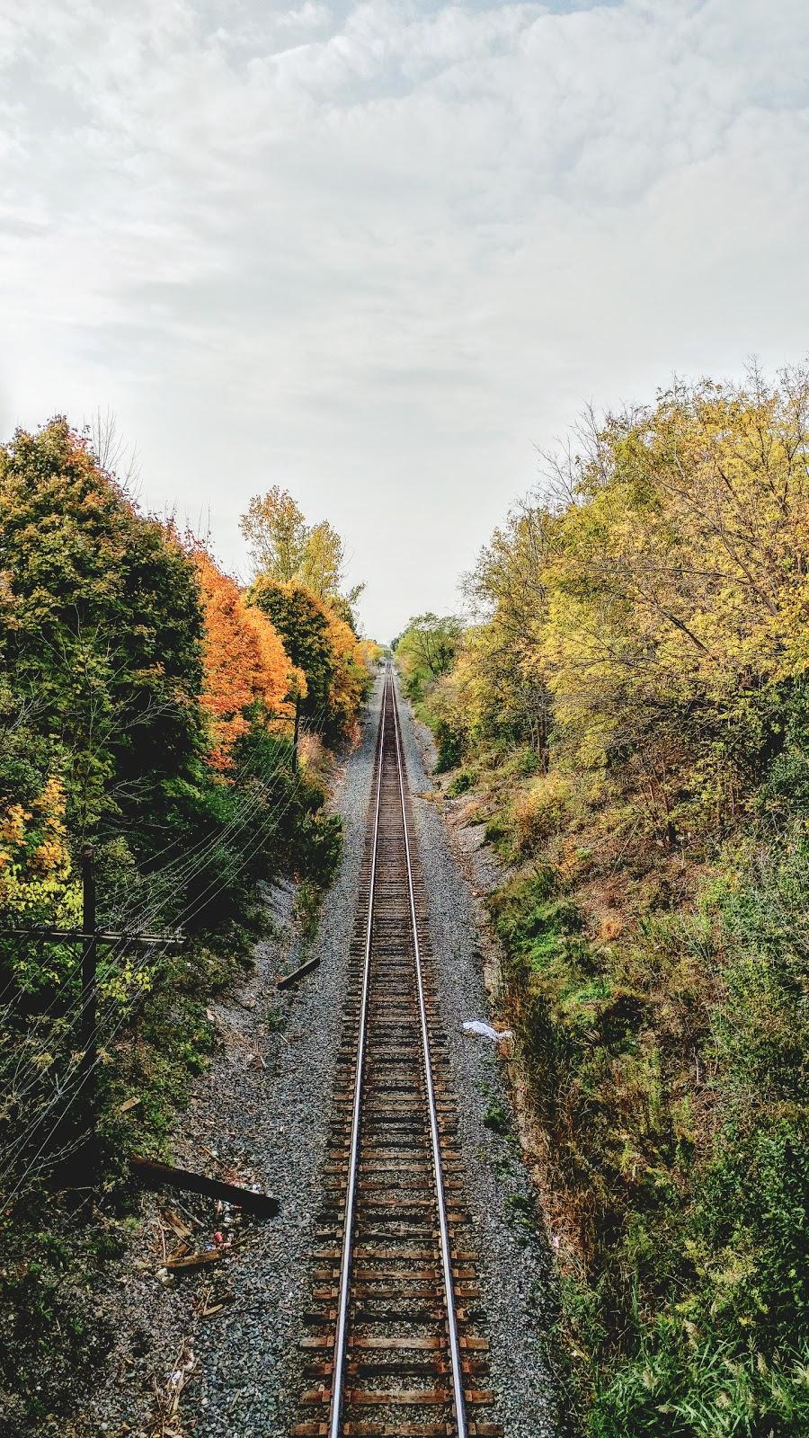Cowan Park | park | Central Oshawa, Oshawa, ON L1H, Canada | 9054363311 OR +1 905-436-3311