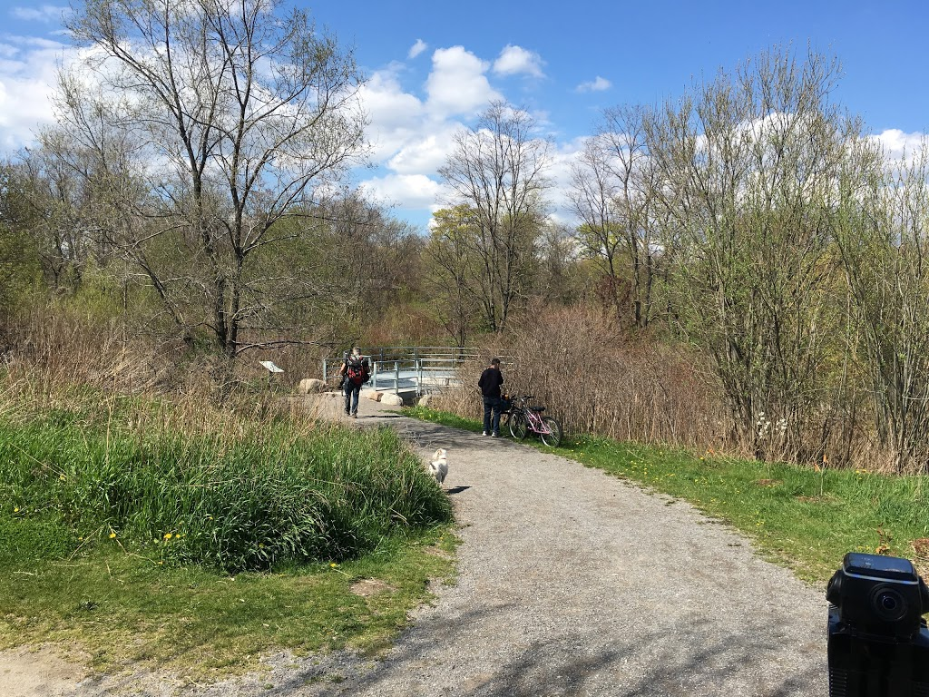 North Creek Wetland Lookout   park   Colonel Samuel Smith Park Dr, Toronto, ON M8V, Canada