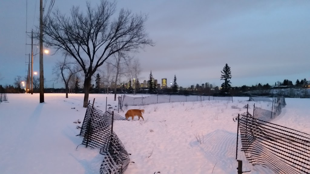 River Park Off Leash Area | park | 3Y5, 4500 14a St SW, Calgary, AB T2T 2V8, Canada
