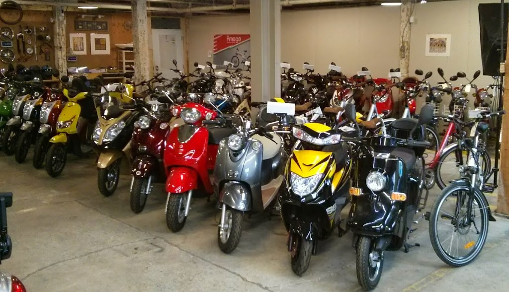 Golectric Inc. | bicycle store | 10 Osler Ct, Dundas, ON L9H 4L3, Canada | 9055122816 OR +1 905-512-2816