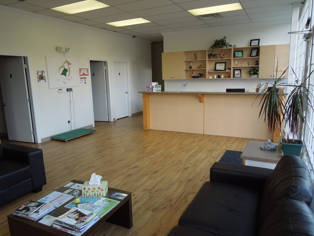 Intercity Animal Emergency Clinic | health | 580 SE Marine Dr, Vancouver, BC V5X 2T4, Canada | 6043218080 OR +1 604-321-8080