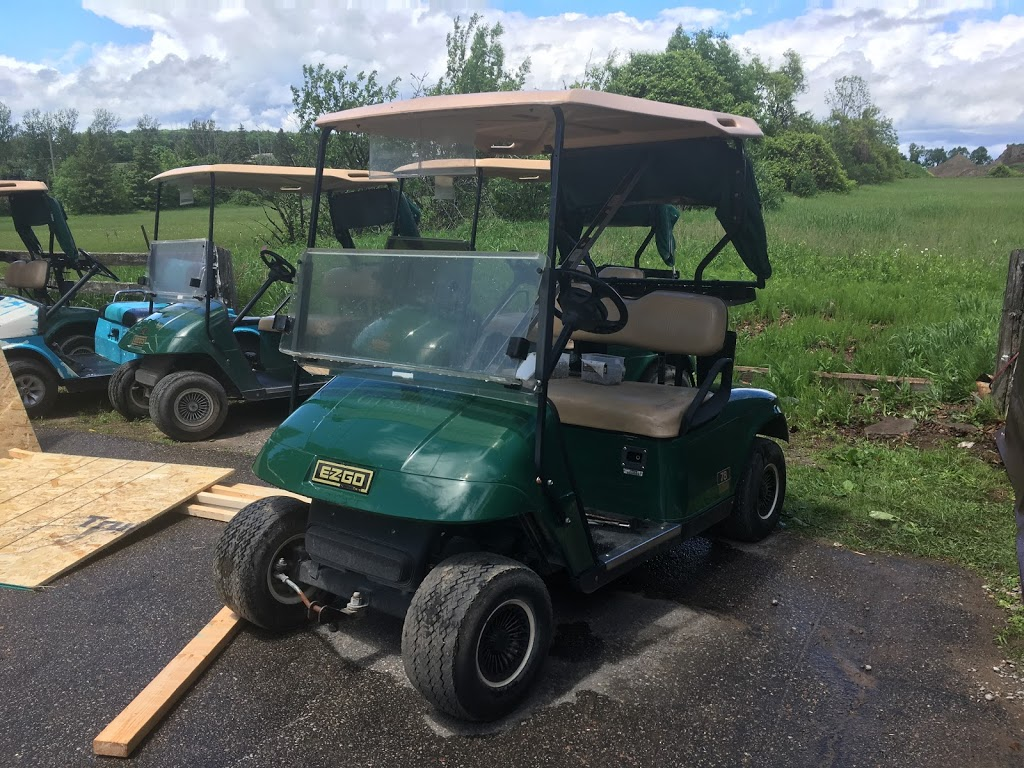 Central Golf Carts INC   store   Enfield Rd, Clarington, ON L0B 1J0, Canada