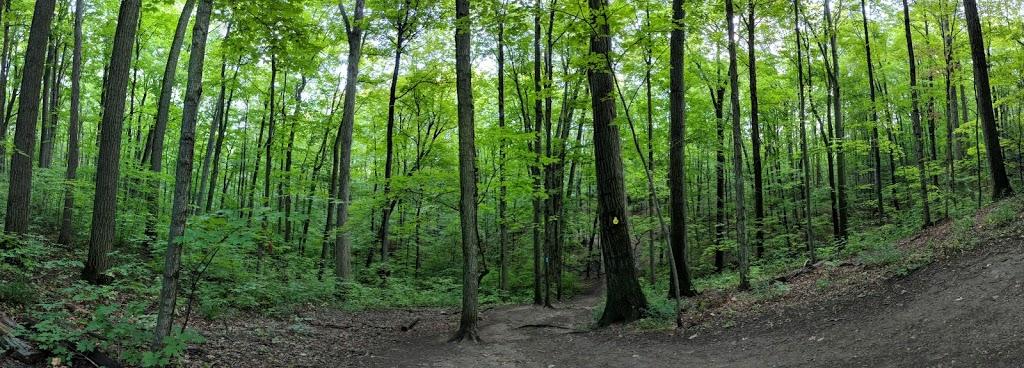 Kerncliff Park - Ian Reid Side Trail | park | 2198 Kerns Rd, Burlington, ON L7P 1P8, Canada | 9053357600 OR +1 905-335-7600