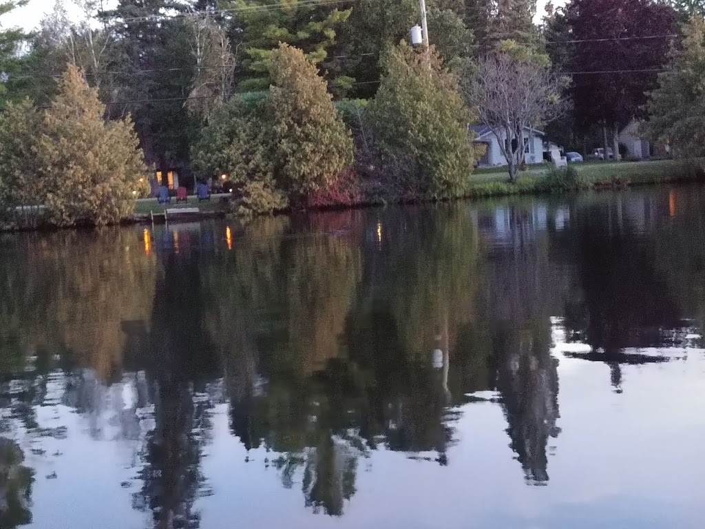 Riverview Cottages | lodging | 42 Coldstream Rd, Fenelon Falls, ON K0M 1N0, Canada | 7058873840 OR +1 705-887-3840