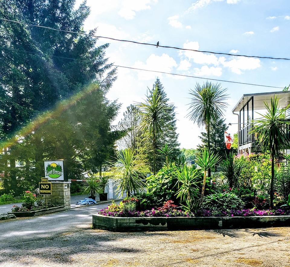 Lost Forest Park | point of interest | 4449 Milburough Town Line, Burlington, ON L7P 0C5, Canada | 9056897648 OR +1 905-689-7648