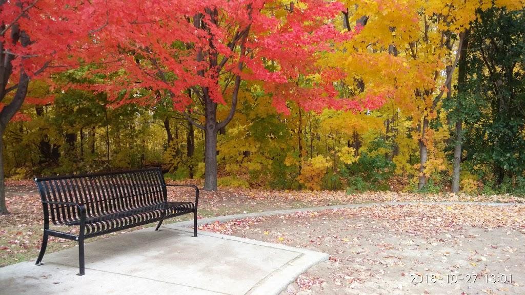 Thomas Frisby Woods | park | 120 Tea Rose St, Markham, ON L6C 1Y3, Canada