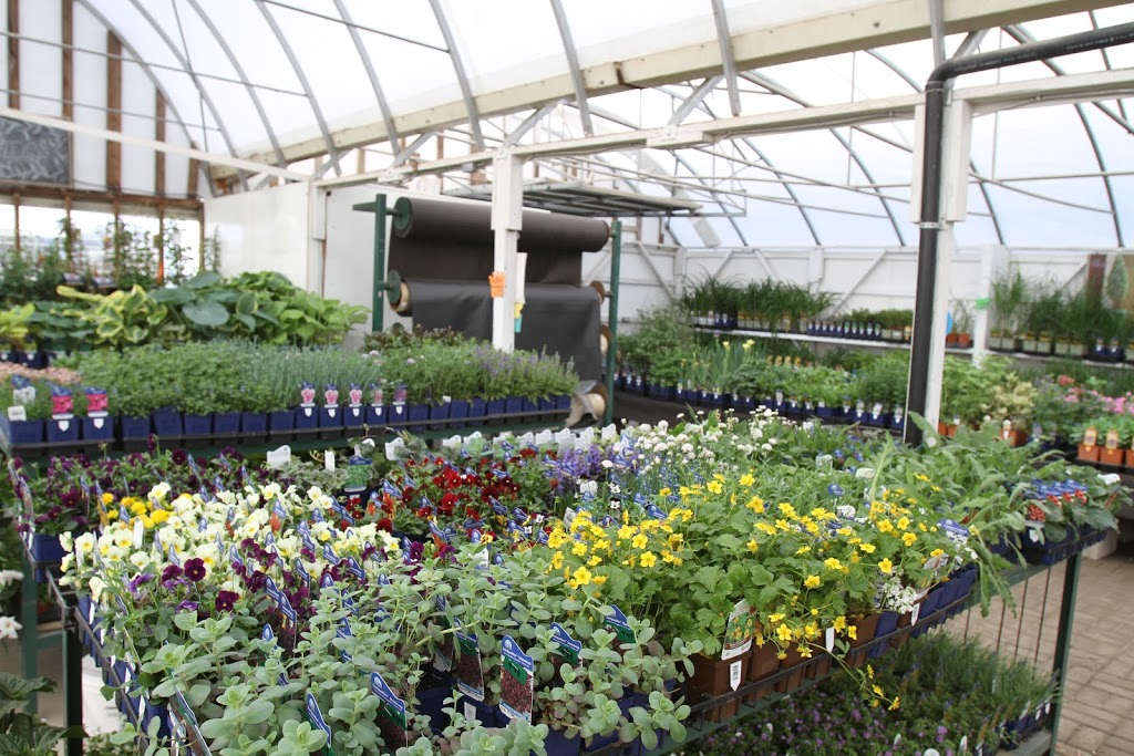 Bellavance Nursery And Landscaping | store | 1521 Essex County Rd 22, Belle River, ON N0R 1A0, Canada | 5197275432 OR +1 519-727-5432
