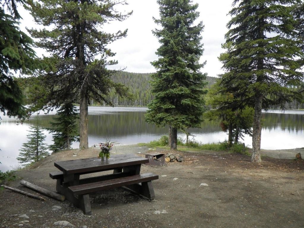 Brenda Lake Forestry Campground | campground | Unnamed Road, Douglas Lake, BC V0E 1S0, Canada