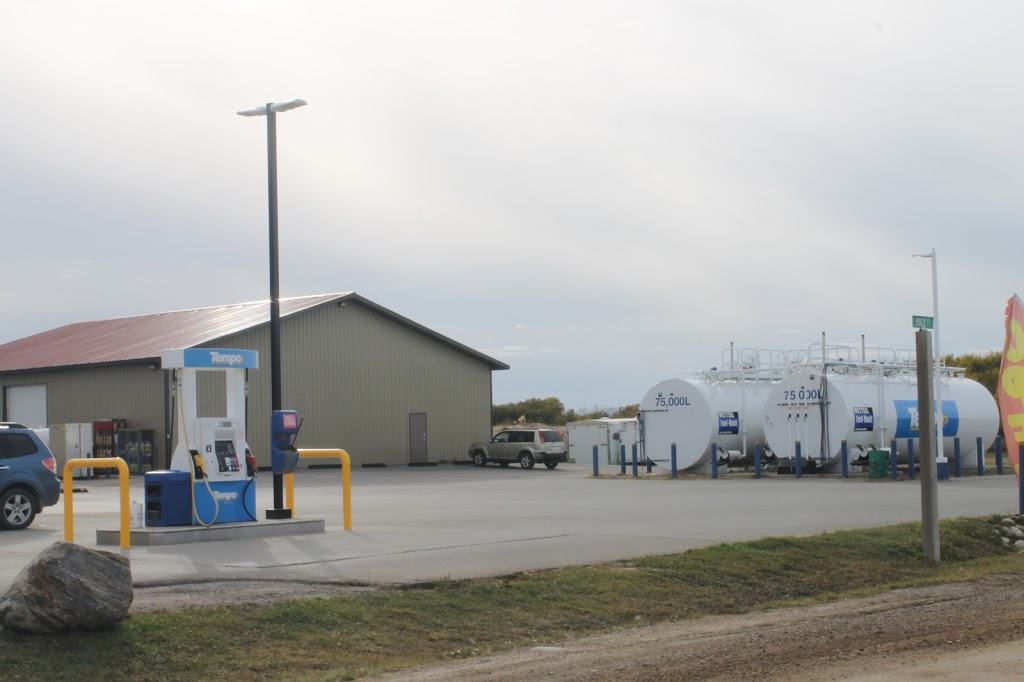 TEMPO, Papa Geordie Gas & Grocery   convenience store   Hwy 54, Regina Beach, SK S0C 4C0, Canada   3067294445 OR +1 306-729-4445