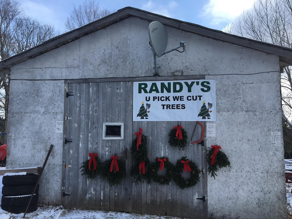 Randys U-Pick Christmas Trees   point of interest   148 Aylesford Rd, Springfield, NS B0R 1H0, Canada   9025472230 OR +1 902-547-2230