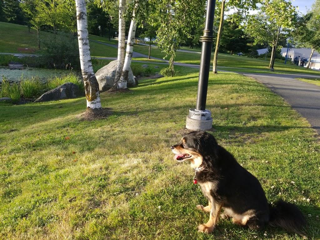 Settlers Park | park | 1250 Confederation Dr, Port Coquitlam, BC V3C 5X3, Canada | 6049275411 OR +1 604-927-5411