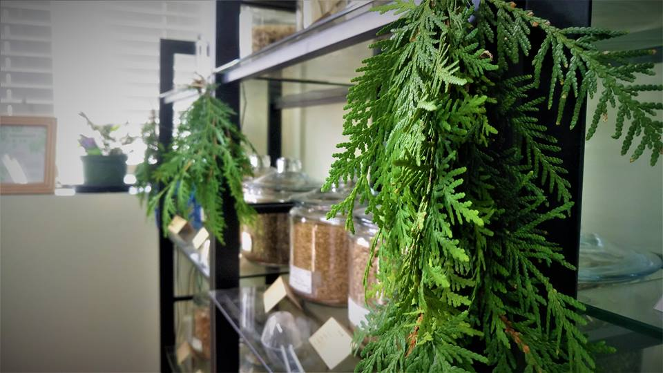 Niagara Medicinal Herbs | health | 1874 Unit#1, RR 20, Fonthill, ON L0S 1E6, Canada | 9058921926 OR +1 905-892-1926