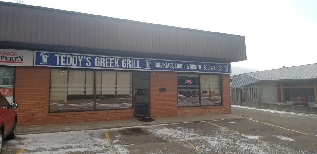 Teddys Greek Grill | restaurant | 118 Guelph St, Georgetown, ON L7G 4A3, Canada | 9058733033 OR +1 905-873-3033