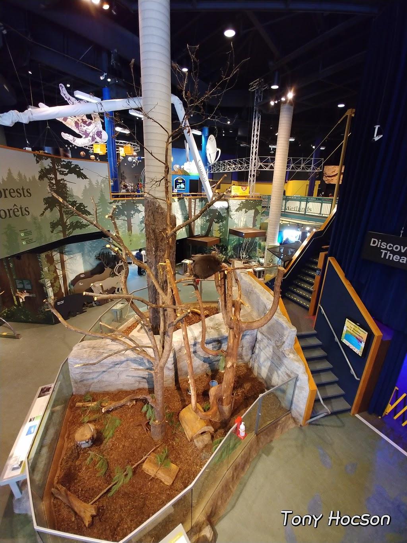 Science North IMAX® | movie theater | 100 Ramsey Lake Rd, Sudbury, ON P3E 5S9, Canada | 7055223701 OR +1 705-522-3701