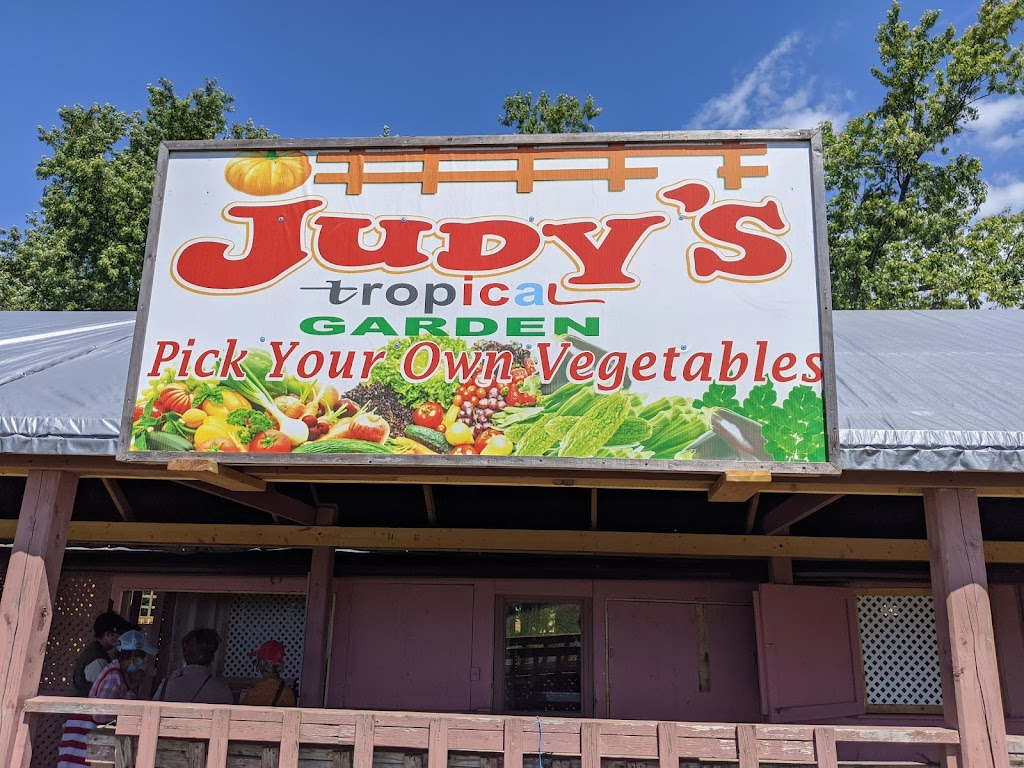 Judys Tropical Garden   point of interest   7297 Reesor Rd, Markham, ON L6B 1A8, Canada   9052018624 OR +1 905-201-8624