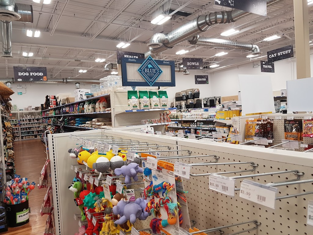 Ren S Pets Depot 81 Billy Bishop Way North York On M3k 2c8 Canada