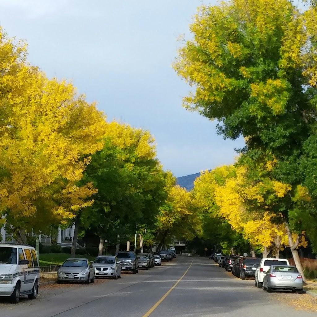 Duggan Park | park | 1494 Bernard Ave, Kelowna, BC V1Y 6R7, Canada