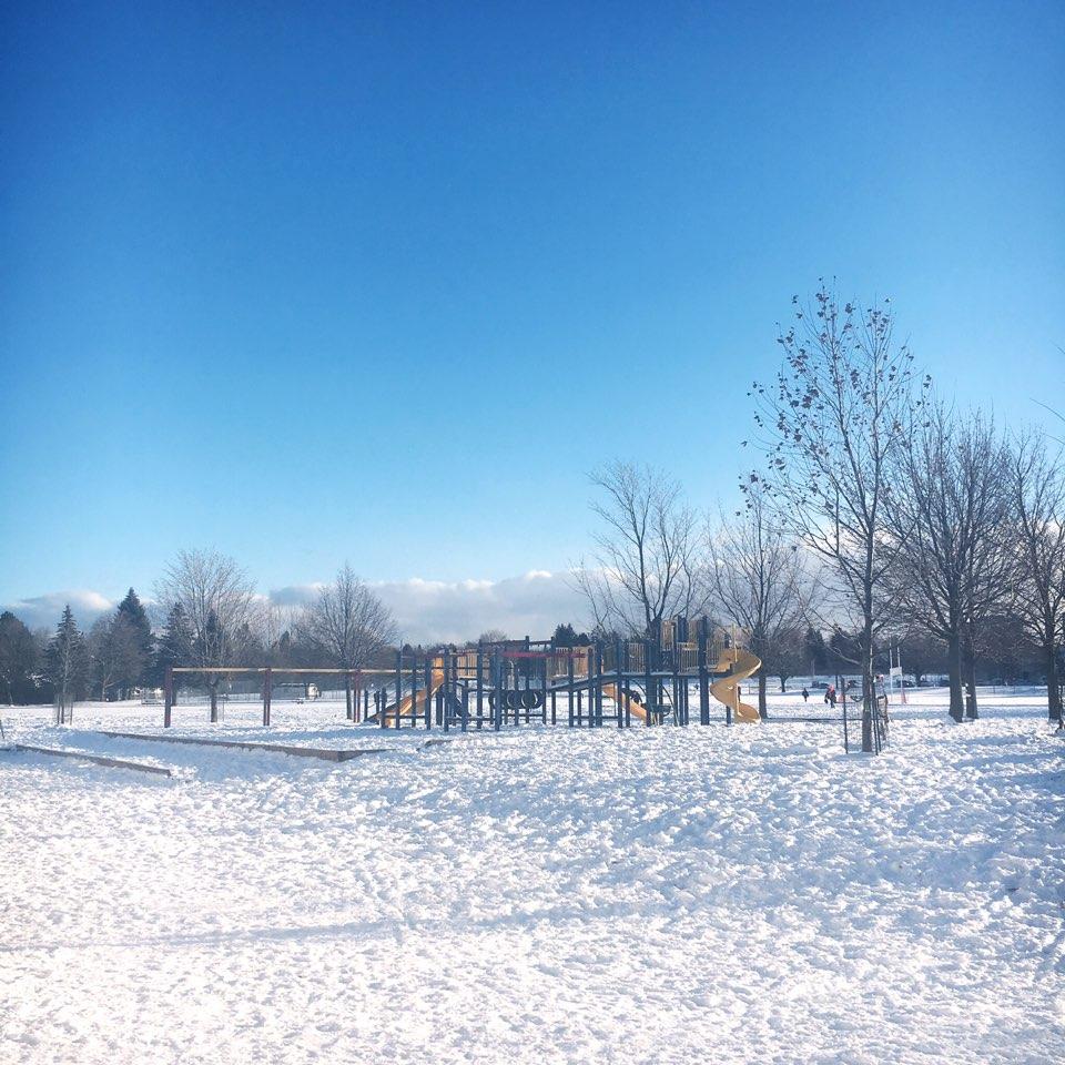 Arbor Glen Public School   school   55 Freshmeadow Dr, North York, ON M2H 3H6, Canada   4163952020 OR +1 416-395-2020