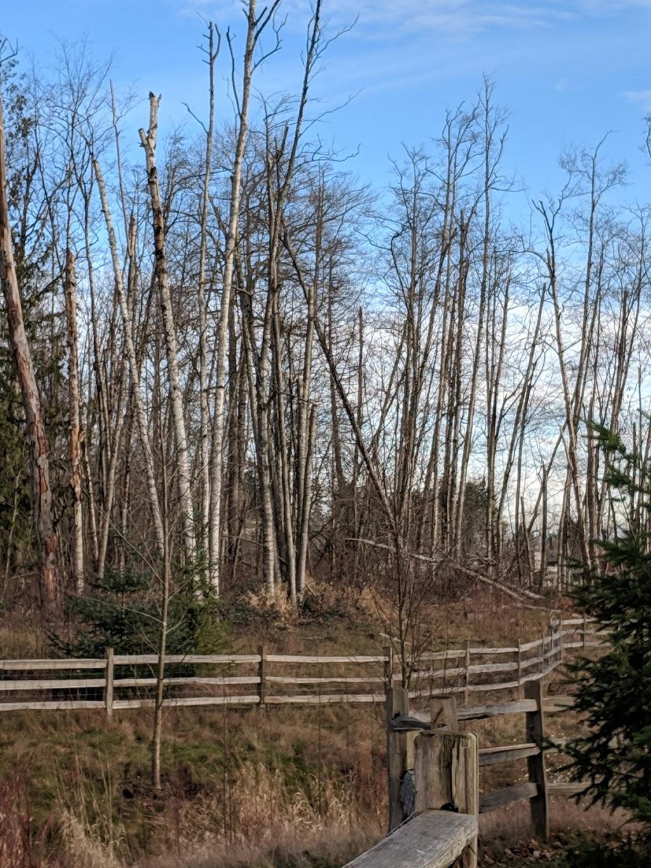 Newton Pond Park | park | Surrey, Newton, BC V3W 5A3, Canada