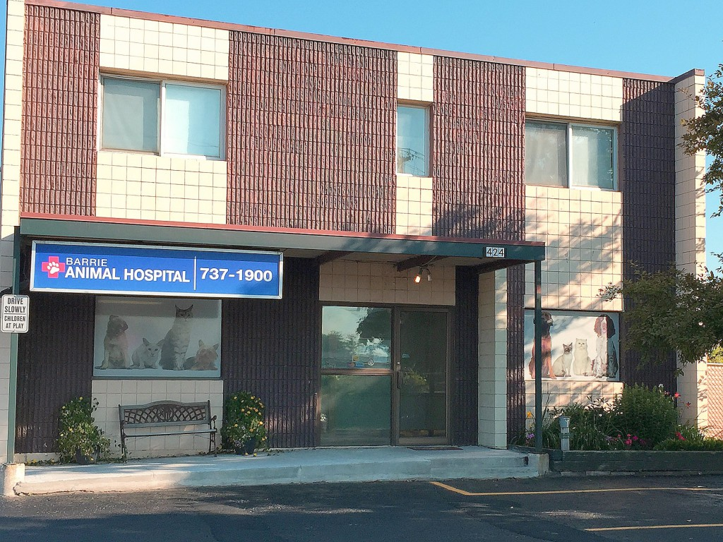 Barrie Animal Hospital   veterinary care   424 Dunlop St W, Barrie, ON L4N 1C2, Canada   7057371900 OR +1 705-737-1900