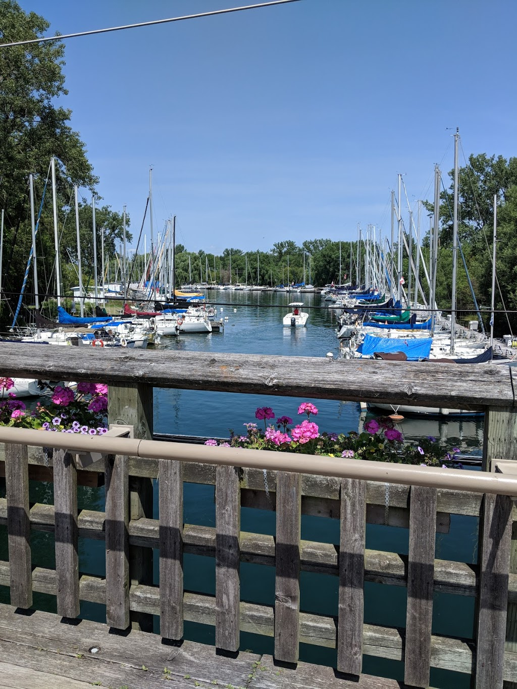 Toronto Islands Residential | point of interest | 102 Lakeshore Ave, Toronto, ON M5J 1X9, Canada | 4162036163 OR +1 416-203-6163