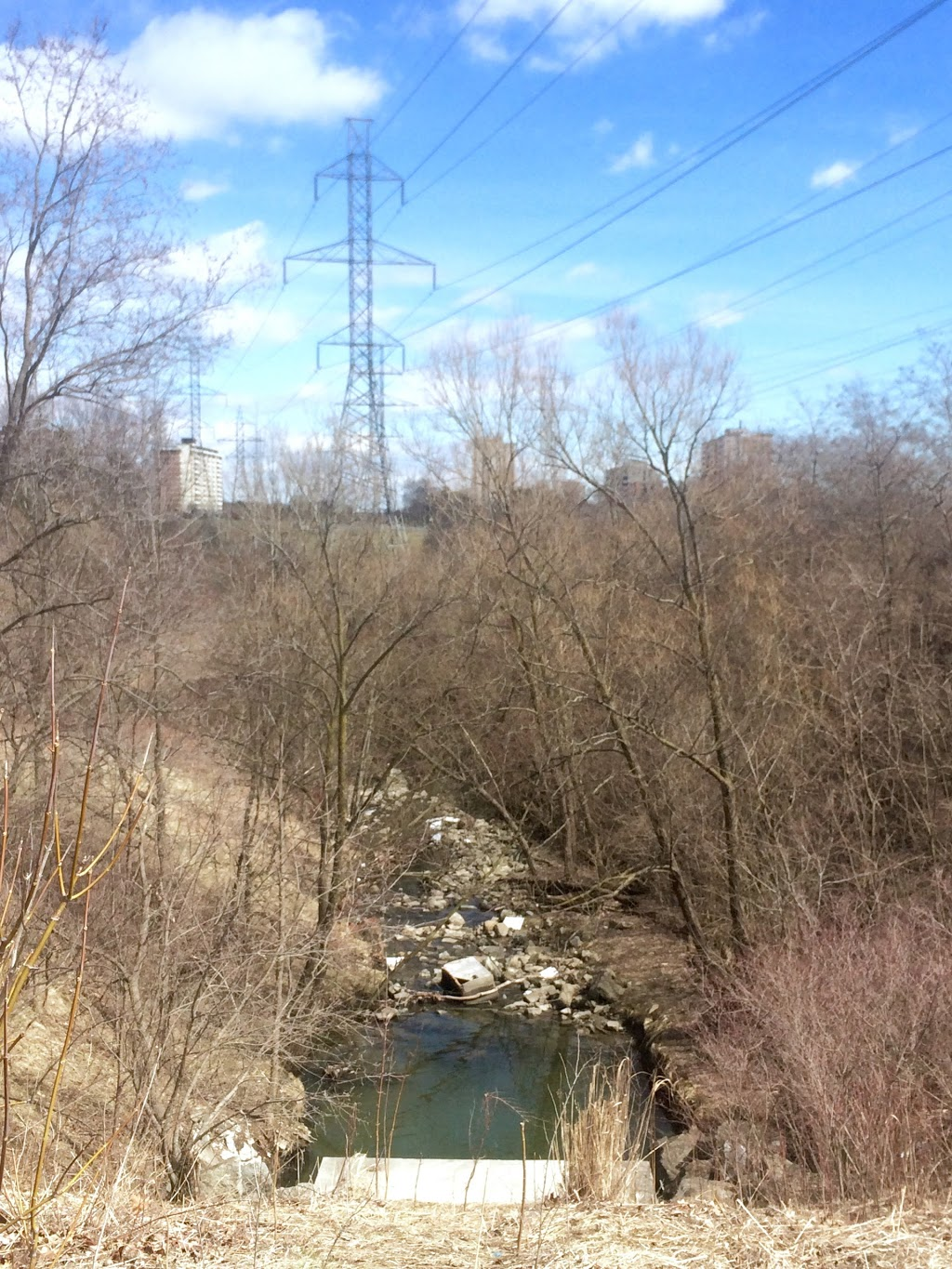 Creekside Park | park | 3600 Bayview Ave, North York, ON M2M 3S6, Canada