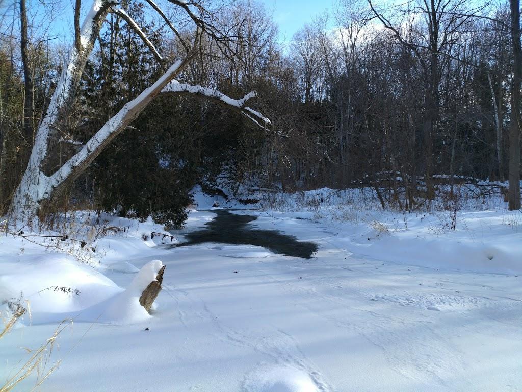 Lovers Creek Ravine | park | Barrie, ON L4N 7P3, Canada | 7057394255 OR +1 705-739-4255