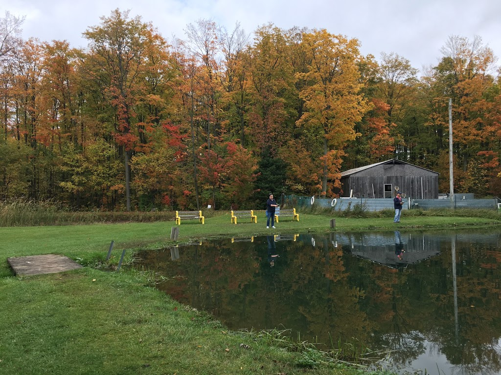 Primrose Trout Farm | point of interest | 595646 Blind Line, Mono, ON L9V 0Z4, Canada | 5199253846 OR +1 519-925-3846