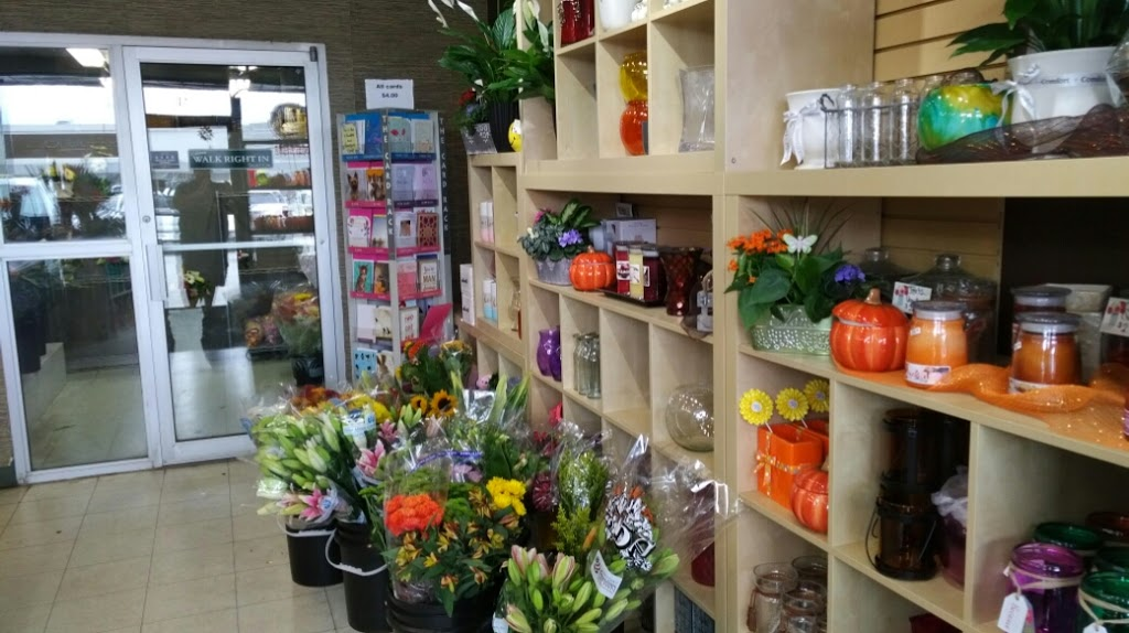 Quinn and Kims Grower Direct and Saskatoon Flowers | clothing store | 294 Venture Crescent, Saskatoon, SK S7K 6M1, Canada | 3069560600 OR +1 306-956-0600