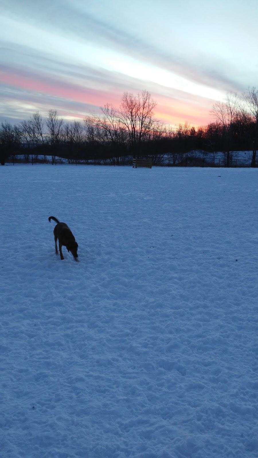 King Road Leash Free Dog Park | park | 1800 King Rd, Burlington, ON L7P 5A5, Canada