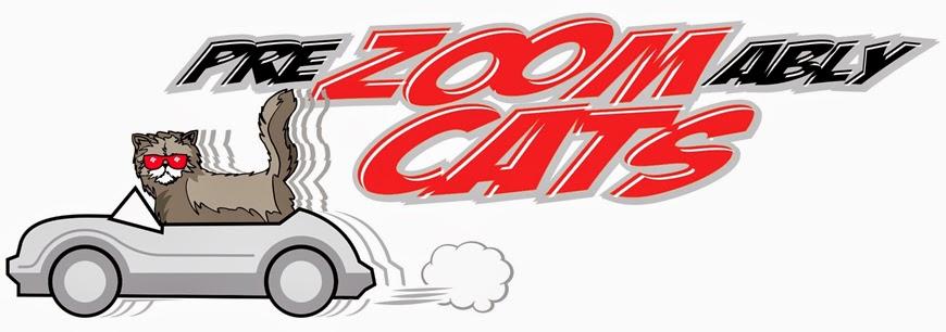 PreZoomably Cats   pet store   1180 Winnipeg Street, Unit B, Regina, SK S4R 1J6, Canada   3065339155 OR +1 306-533-9155
