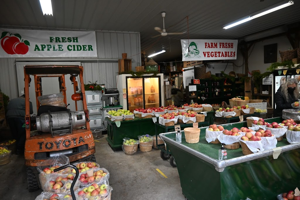 Williams Orchards   point of interest   1724 Pelham St, Fonthill, ON L0S 1E6, Canada   9058925811 OR +1 905-892-5811