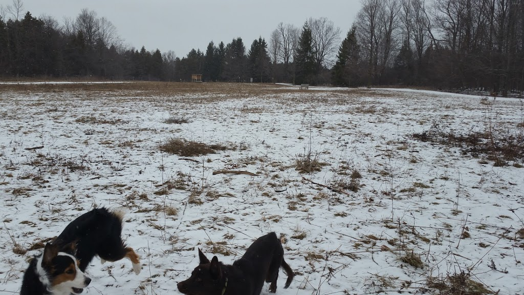 Harmony Valley Conservation Area & Off-Leash Dog Park | park | 915 Grandview St N, Oshawa, ON L1K 2J9, Canada | 9054363311 OR +1 905-436-3311