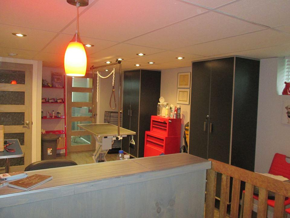 Toilettage la boite aux poils   store   1691 Rue Arzélie, Terrebonne, QC J7M 1B6, Canada   5147137152 OR +1 514-713-7152
