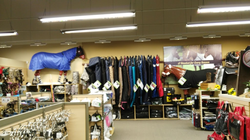 Greenhawk Equestrian Sport - McLaughlin - Clothing store | 5665